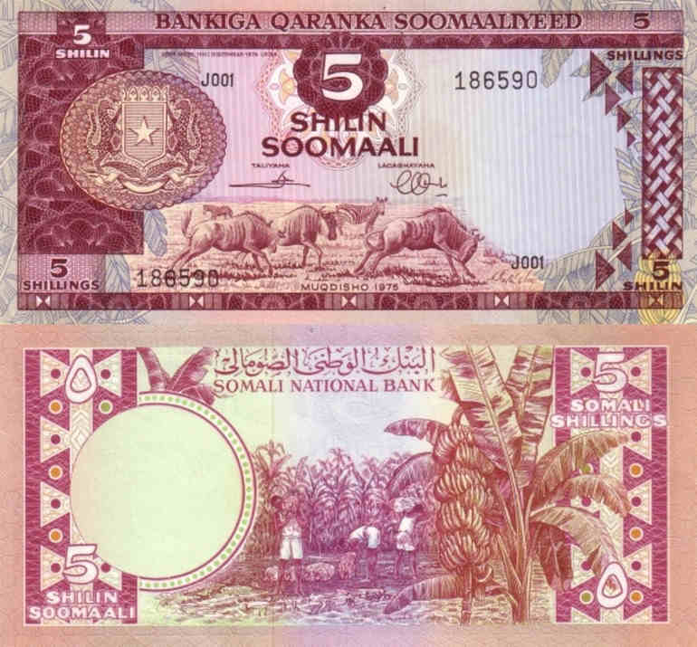 SOMALIA 10 SHILLINGS 1980 P 26 AUNC